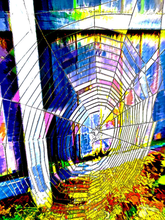 Web Digital Art - The Refracted Cobweb by Steve Taylor