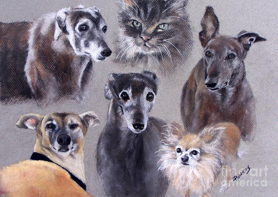 Dogs And A Cat Painting - The Rescued Ones by Mary Lynne Powers