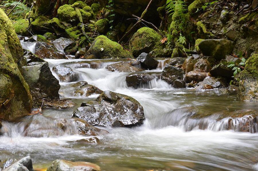 Water Photograph - The Rhythm Method by Stephanie  Bland