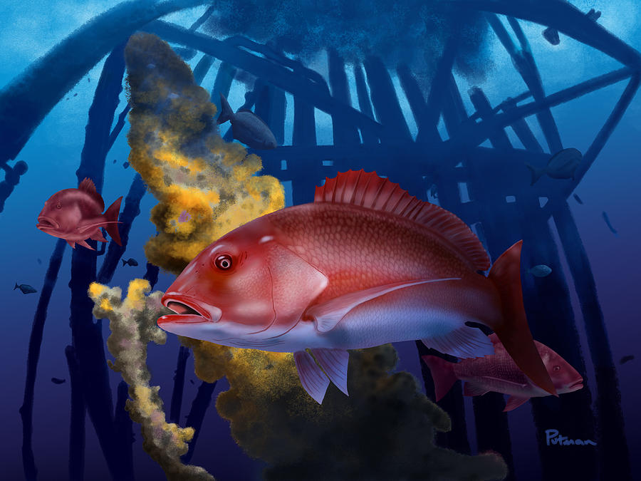 Red Snapper Digital Art - The Rigs by Kevin Putman
