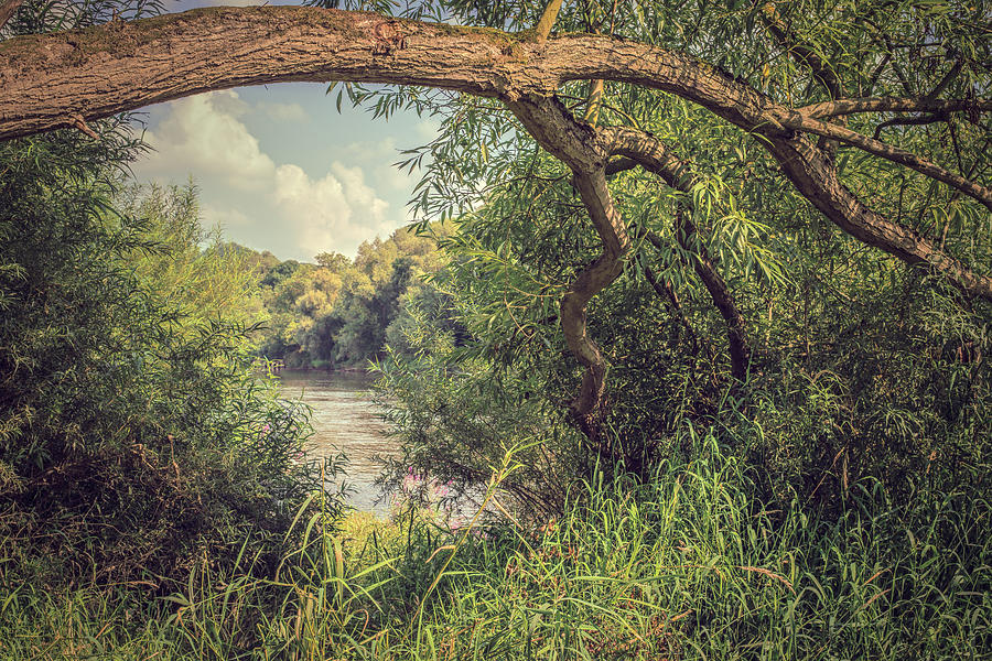 River Photograph - The River Severn At Buildwas by Amanda Elwell