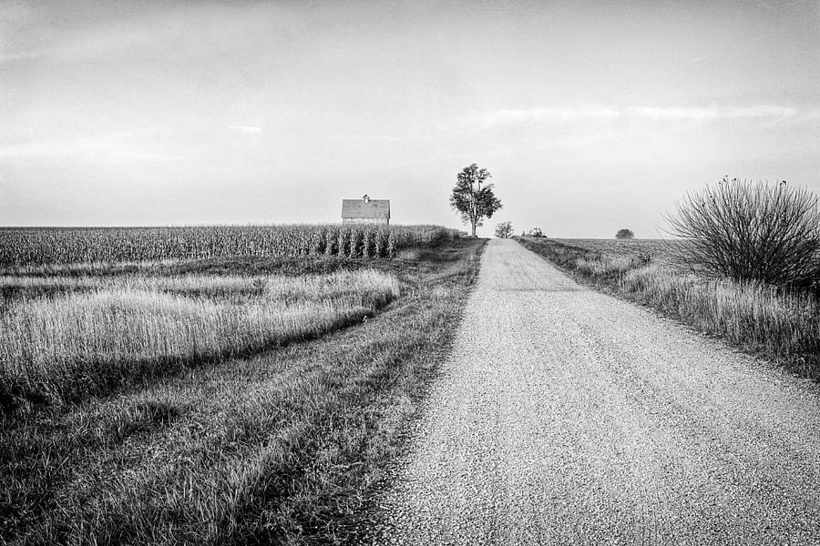 Agricultural Photograph - The Road Home by Jeff Burton