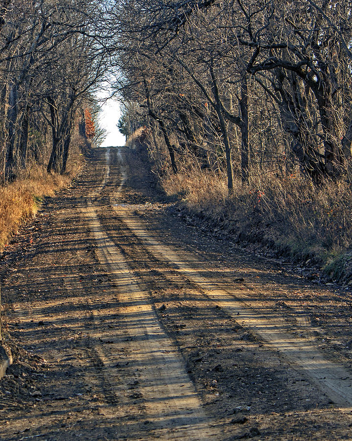 Back Road Photograph - The Road Less Traveled by Kevin Anderson