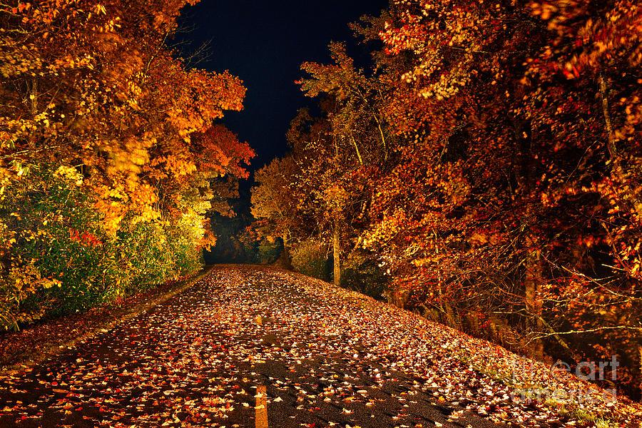 Blue Ridge Parkway Photograph - The Road Less Traveled - Blue Ridge Parkway I by Dan Carmichael