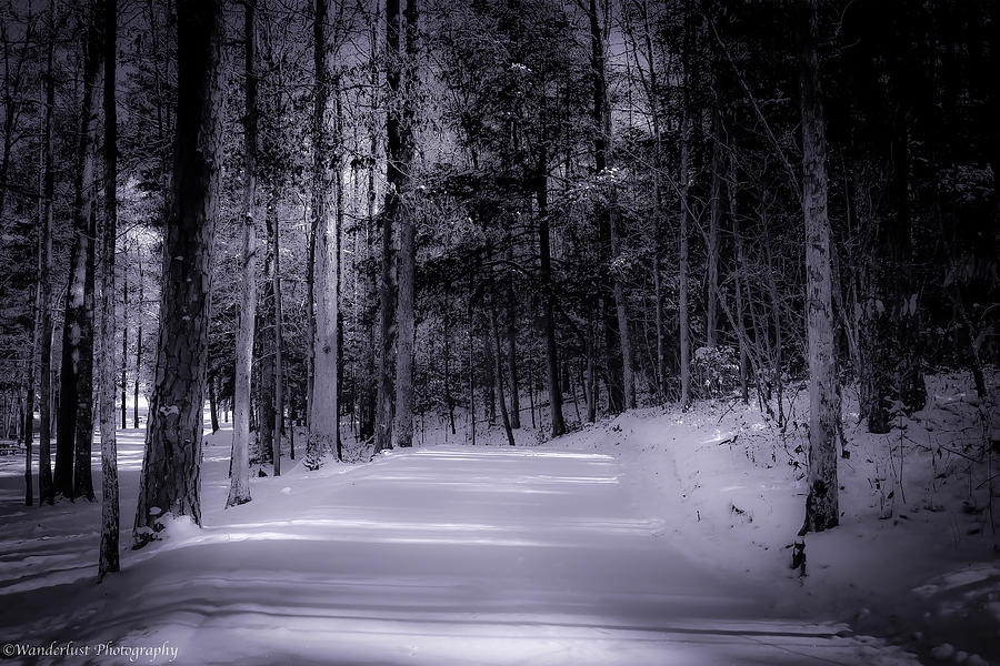 Snow Photograph - The Road Less Traveled by Paul Herrmann