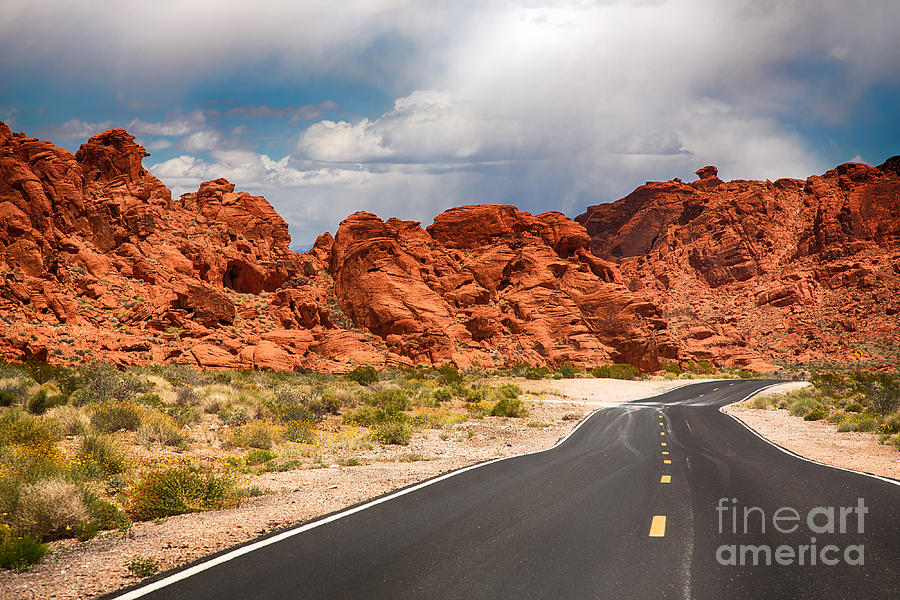 Valley Photograph - The Road To The Valley Of Fire by Jane Rix