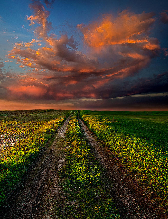 Road Photograph - The Roads We Take by Phil Koch