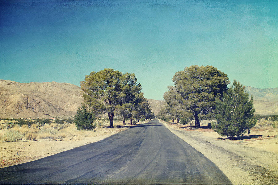 Ca Photograph - The Roads We Travel by Laurie Search