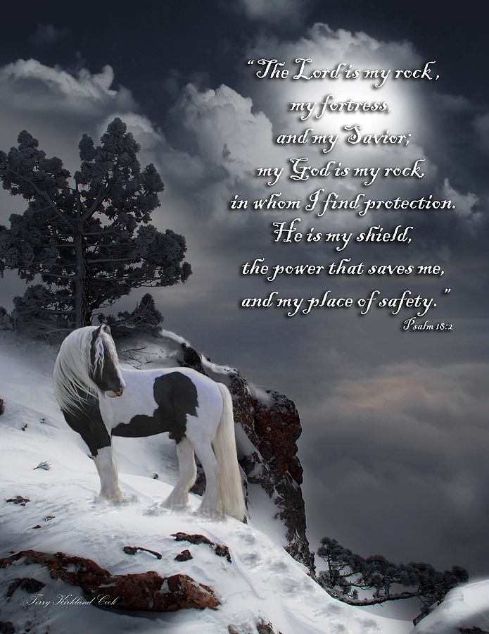 Horse Digital Art - The Rock With Verse by Terry Kirkland Cook