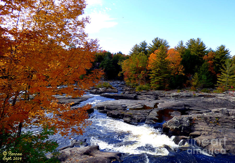 Landscape Photograph - The Rush Of Autumn by Rennae Christman