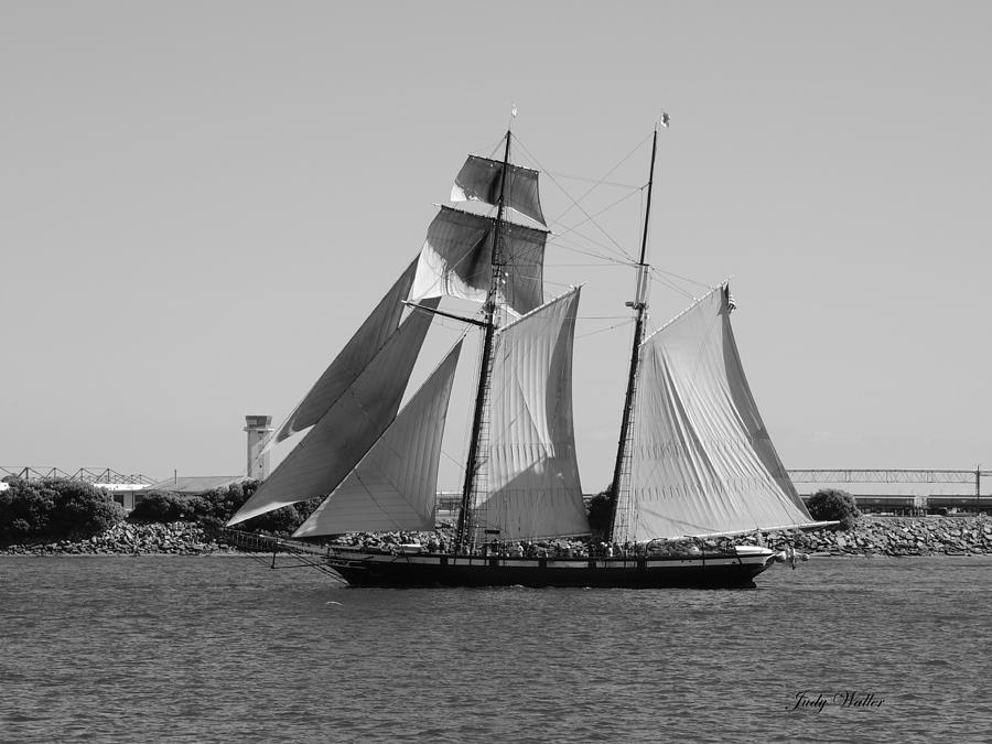 Ocean Photograph - The Sails by Judy  Waller