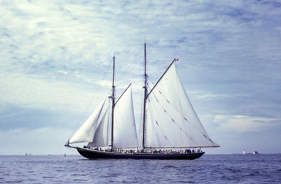 Schooner Photograph - The Schooner Bluenose 2 Again by George Cousins