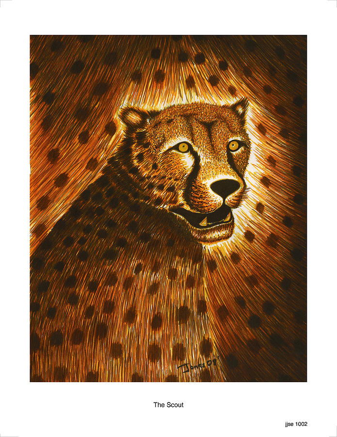 Cheetah Drawing - The Scout by Jonas Jeque