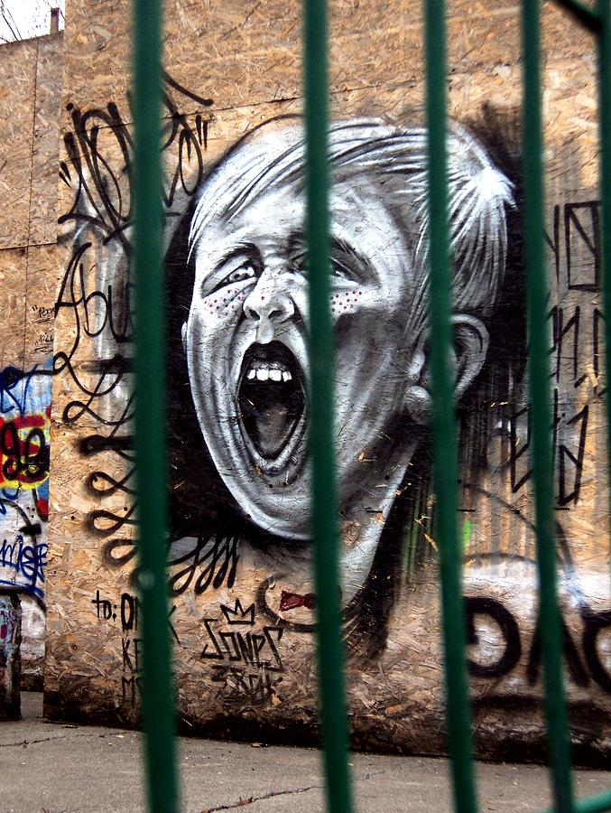 Shout Photograph - The Scream by Ion Relu