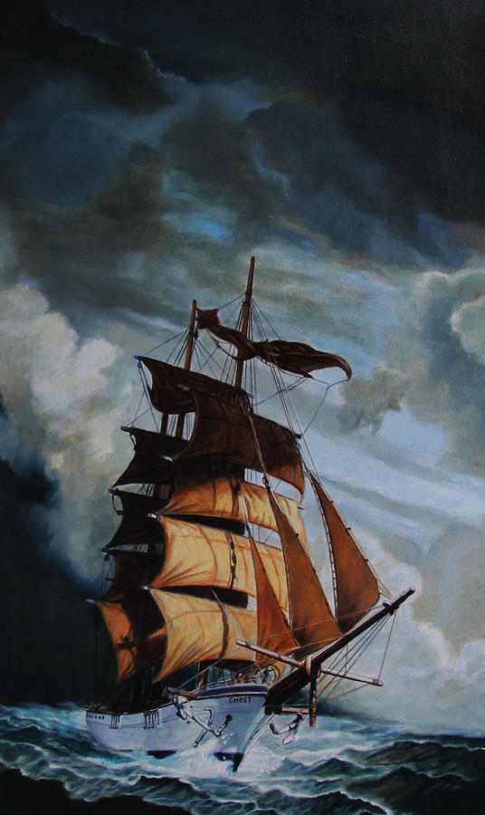 The Sea Wolf by Patrick Whelan