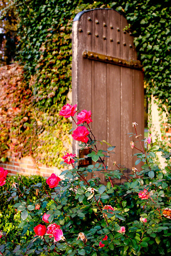Gardens Photograph - The Secret Door  by Allan Millora