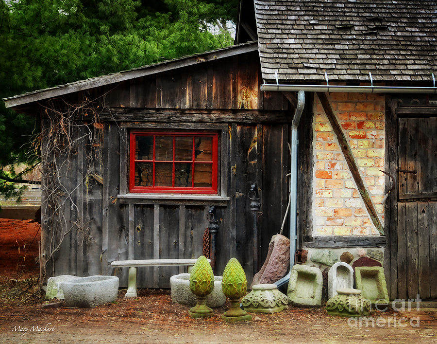 Colgate Photograph - The Shed At Monches Farm by Mary Machare