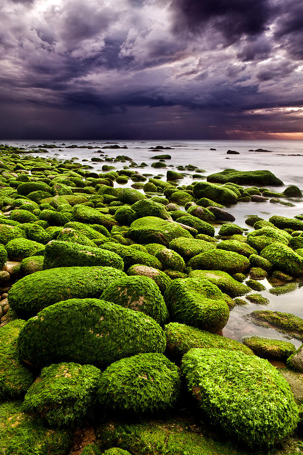 Waterscape Photograph - The Silence After The Storm by Jorge Maia