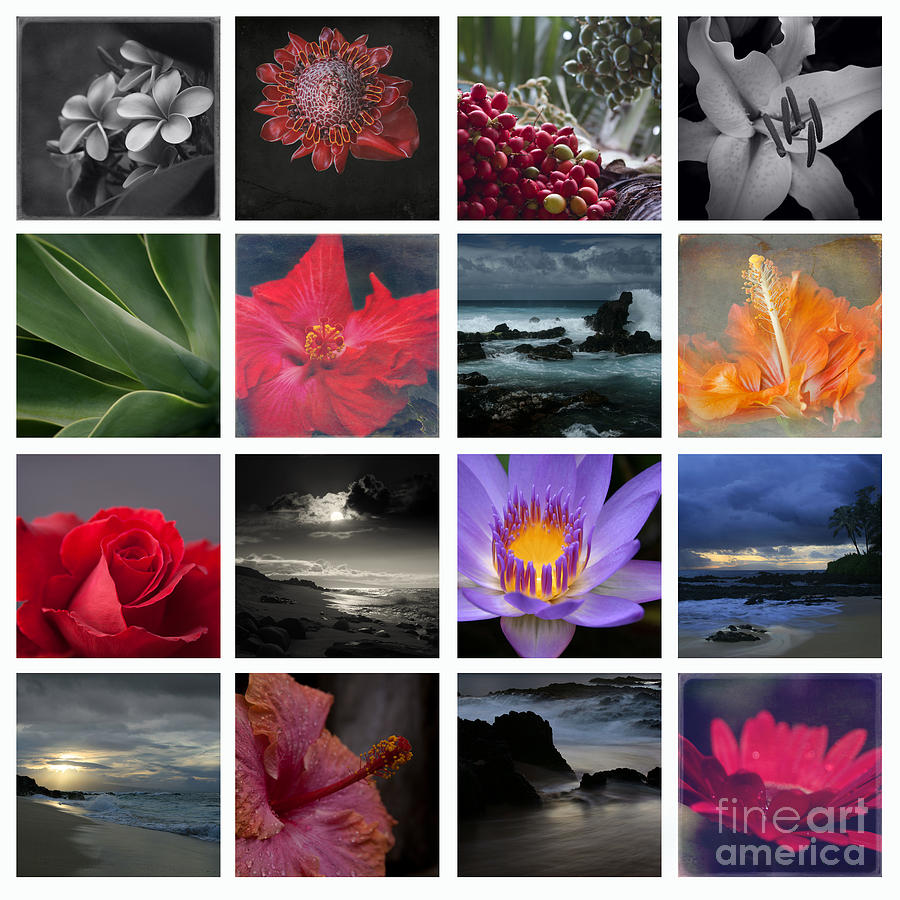 Aloha Photograph - The Silence Of Time by Sharon Mau