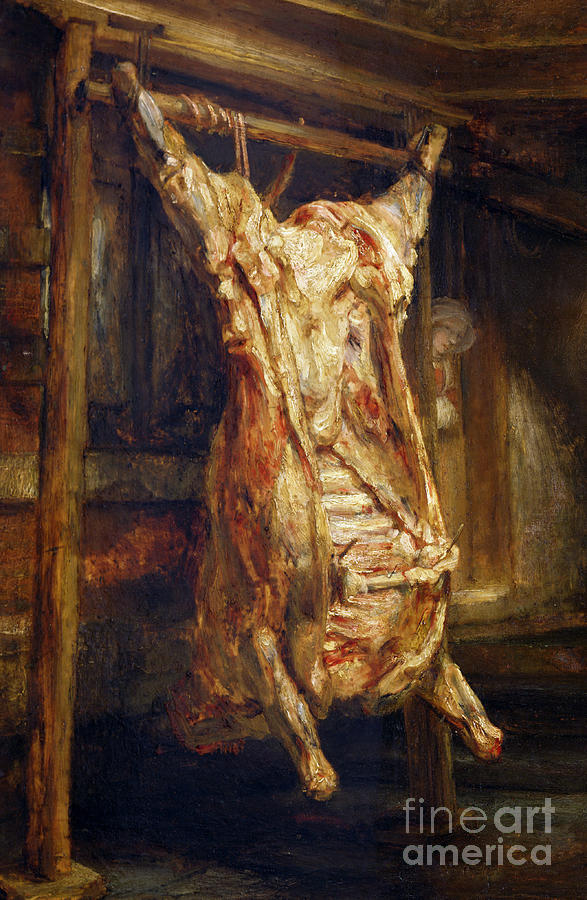 Still Life Painting - The Slaughtered Ox by Rembrandt Harmenszoon van Rijn