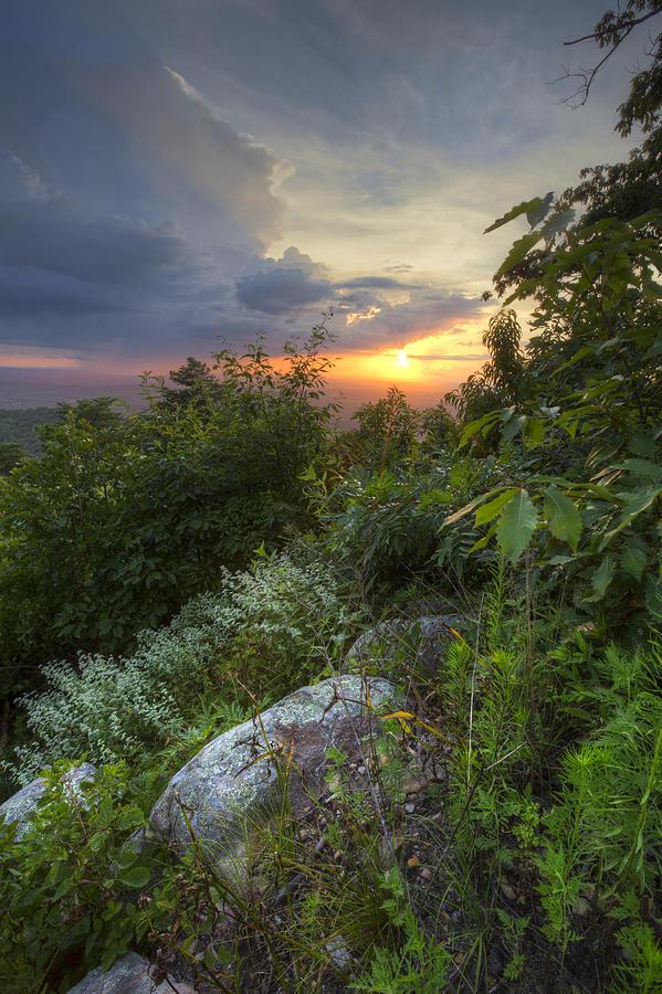 Appalachia Photograph - The Smokies by Debra and Dave Vanderlaan