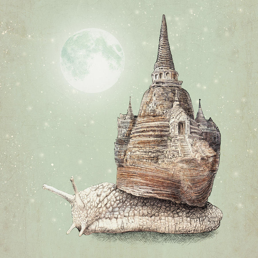 Snail Drawing - The Snails Dream by Eric Fan