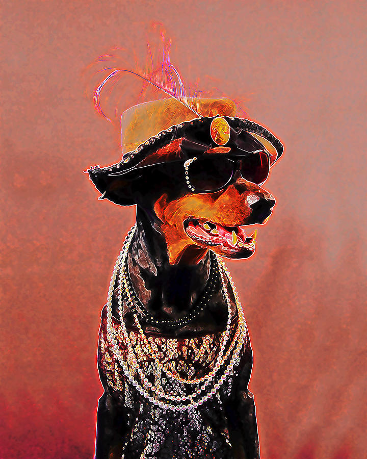 The Sophisticated Dobe by Brian Graybill