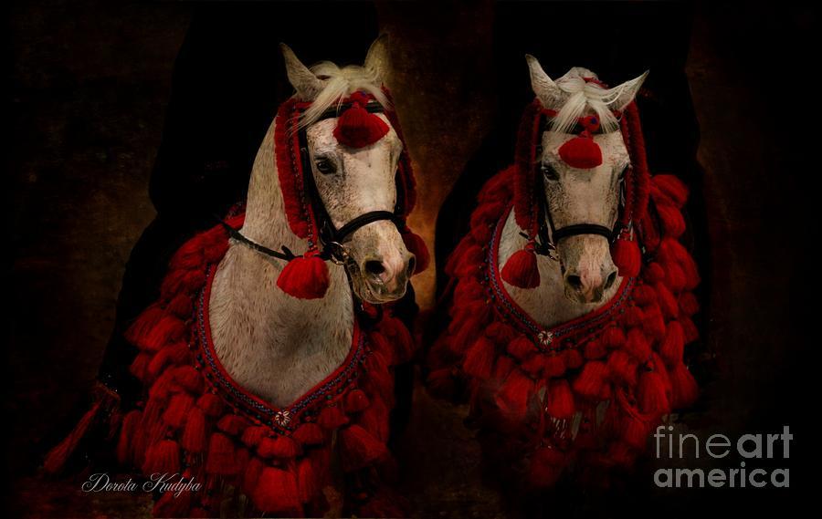 Arabian Horses Photograph - The Sounds Of Desert by Dorota Kudyba