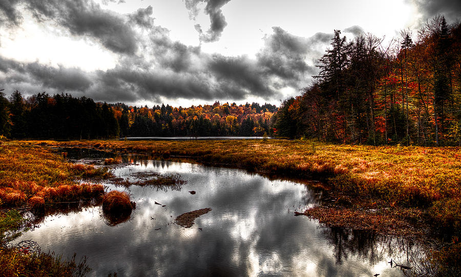 Adirondack Photograph - The South End Of Cary Lake by David Patterson