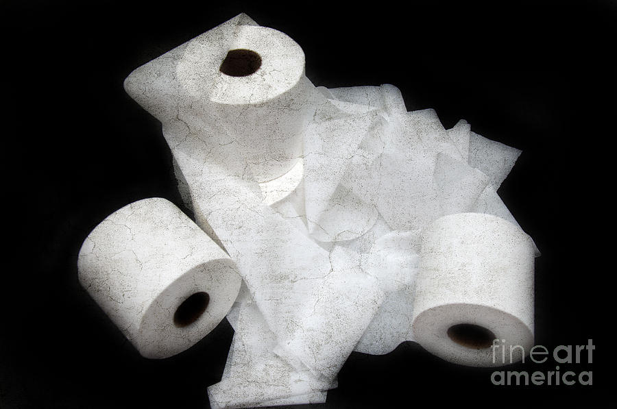 Toilet-paper Photograph - The Spare Rolls 3 - Toilet Paper - Bathroom Design - Restroom - Powder Room by Andee Design