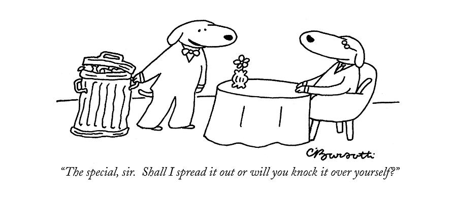 The Special Drawing by Charles Barsotti