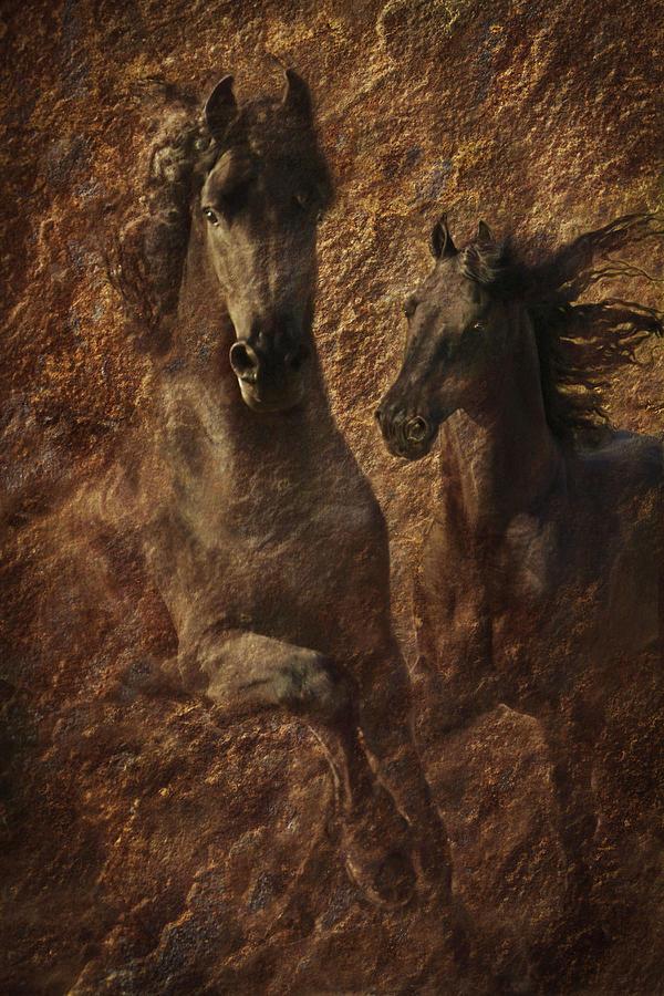 Stallions Photograph - The Spirit Of Black Sterling by Melinda Hughes-Berland