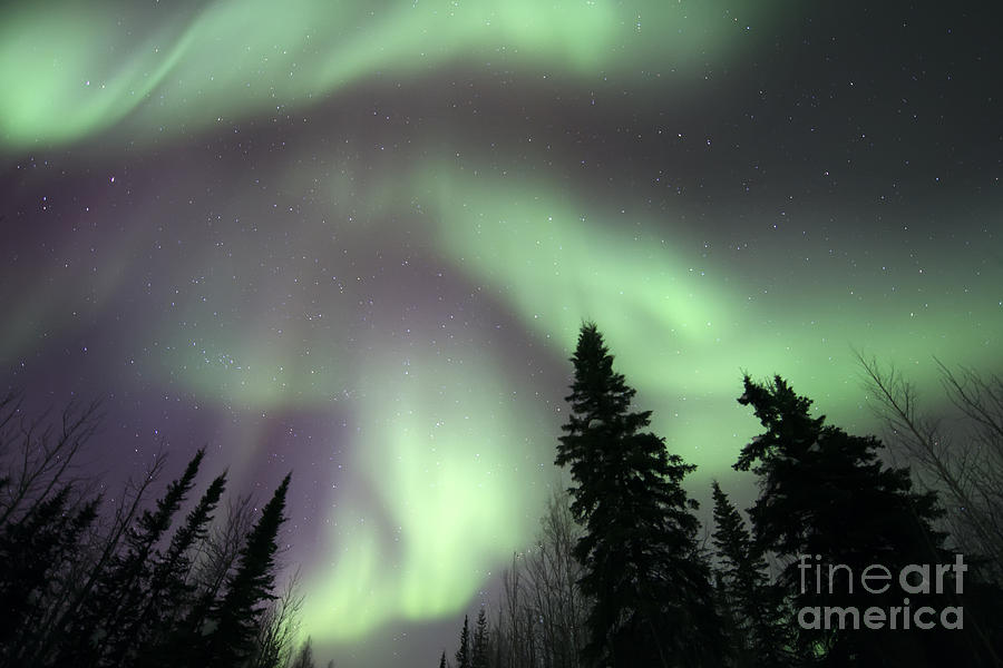 Aurora Borealis Photograph - The Spirits Are Dancing by Priska Wettstein