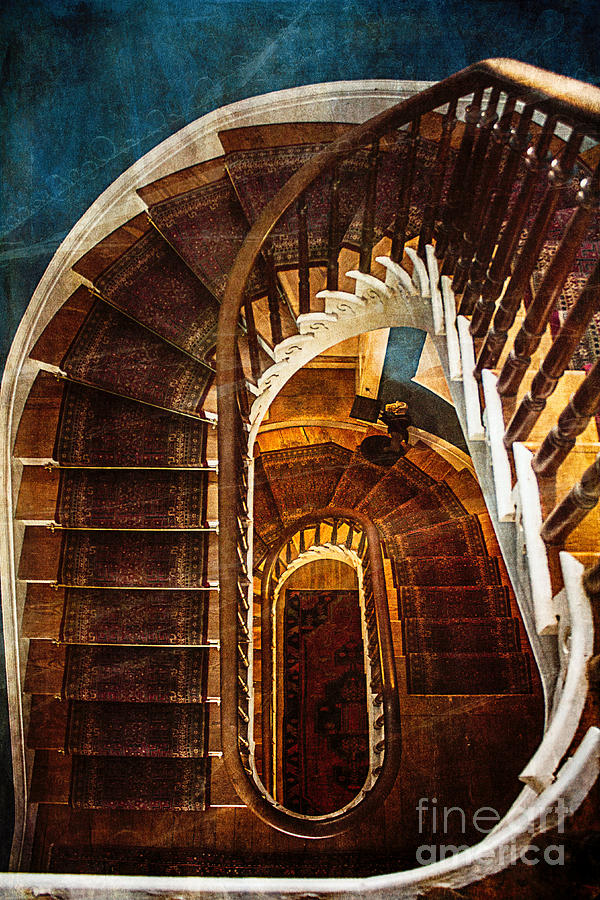 Staircase Photograph - The Staircase by Arlene Carmel