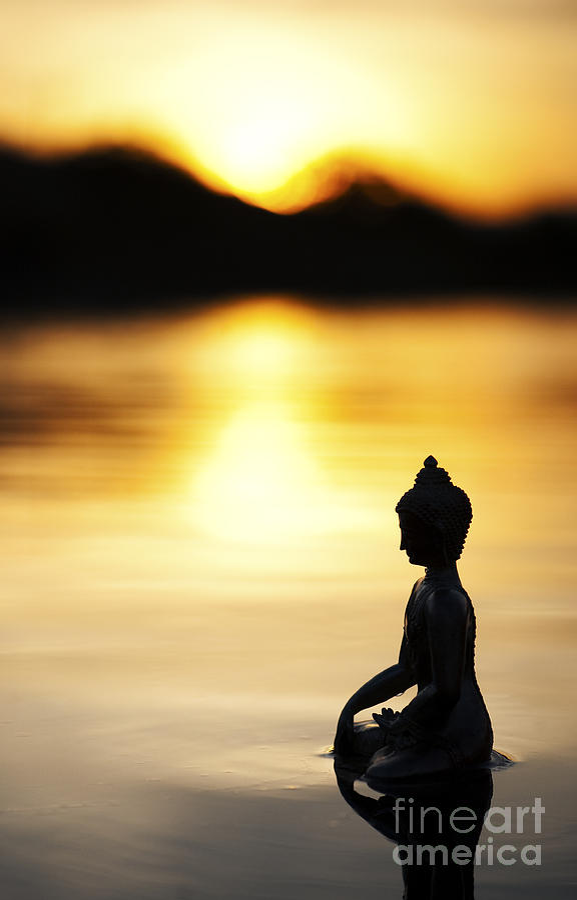 Buddha Photograph - The Stillness of Sunrise by Tim Gainey