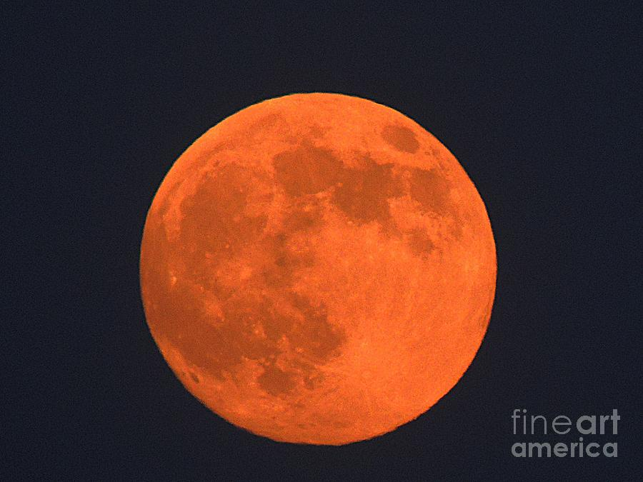 Planet Photograph - The Super Moon by Marcia Lee Jones