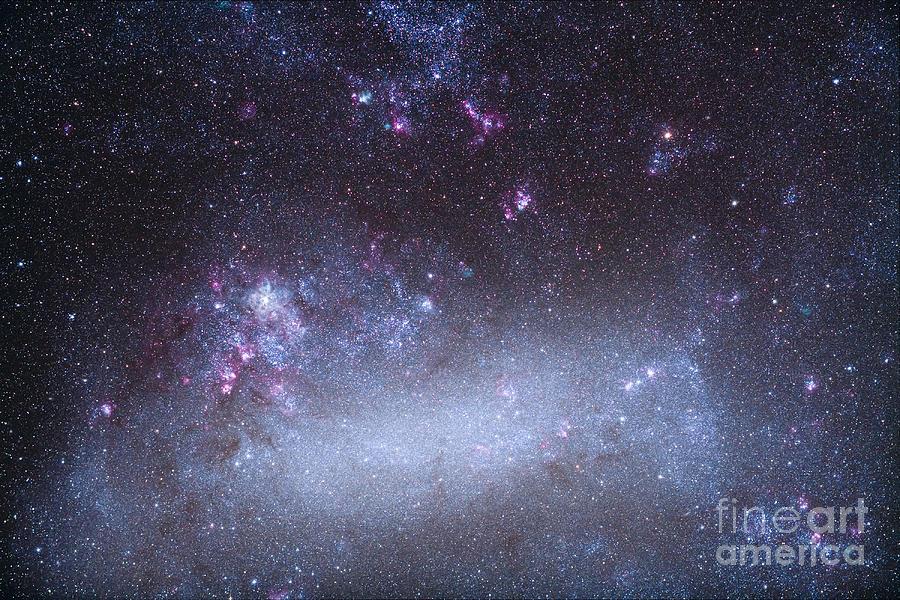 The Tarantula Nebula In The Large Photograph