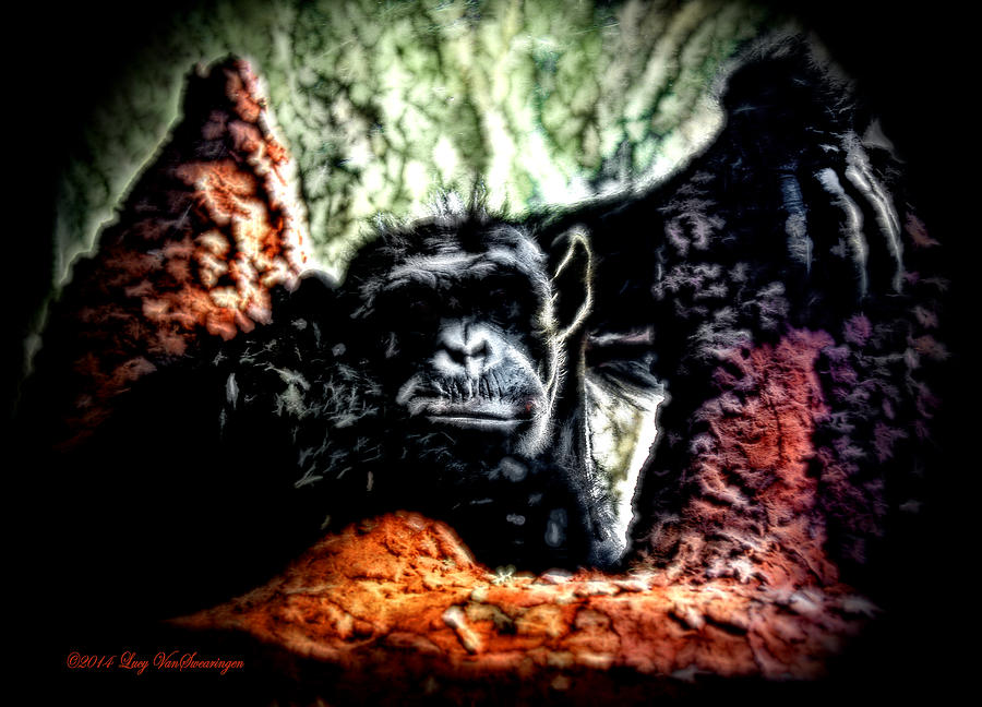 Zoo Photograph - The Thinker by Lucy VanSwearingen