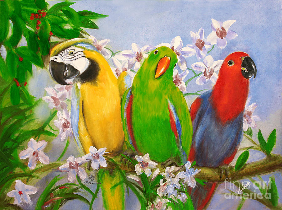 Parrot Painting - The Three Tenors by Stella Violano
