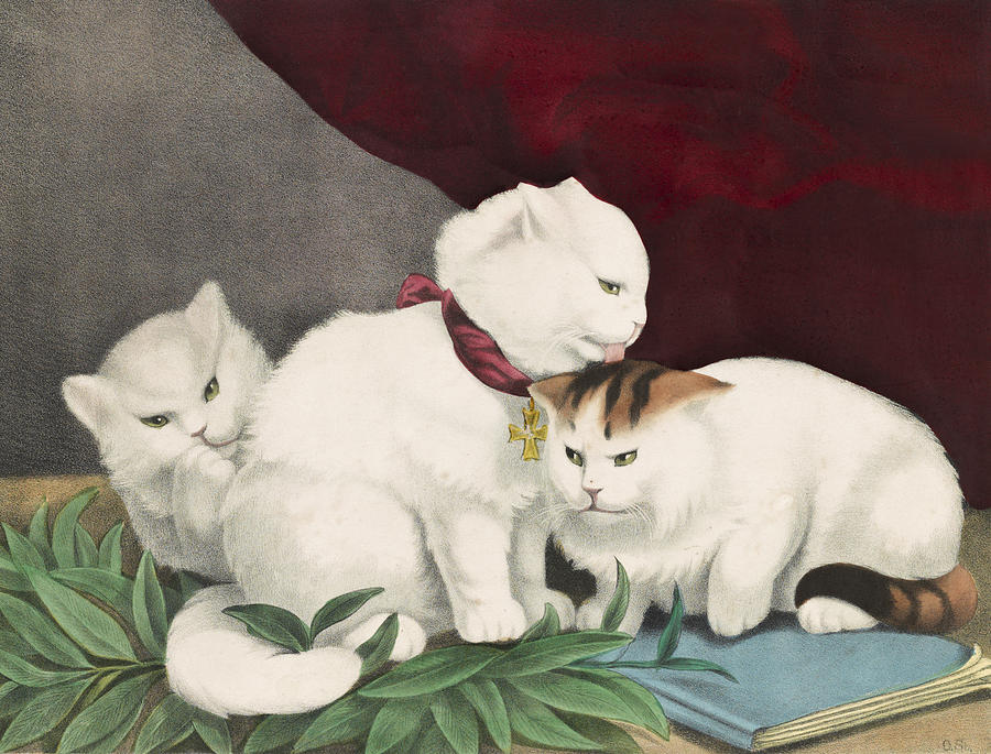 Adorable Painting - The Three White Kittens Circa 1856 by Aged Pixel