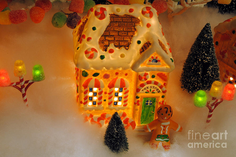 Scenic Tours Photograph - The Toy Store by Skip Willits