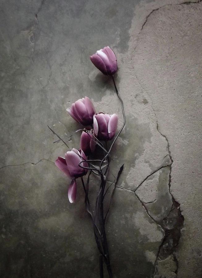 Flower Photograph - The Tulip by Kahar Lagaa
