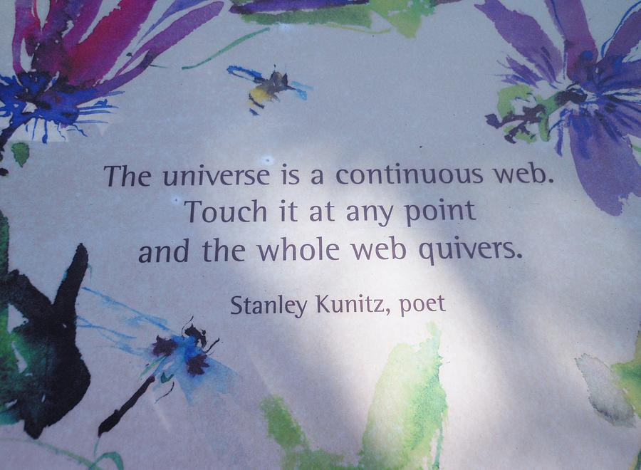Poem Photograph - The Universe by Kay Gilley