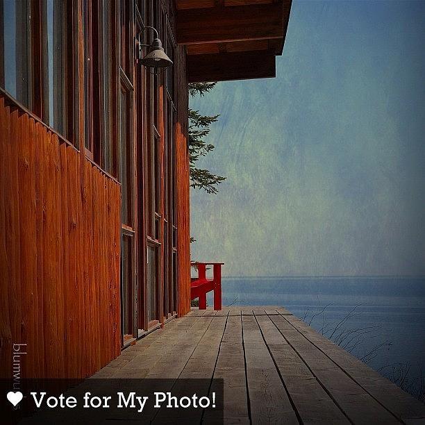 The View | Matthew Blum  i Need Your Photograph by Matthew Blum