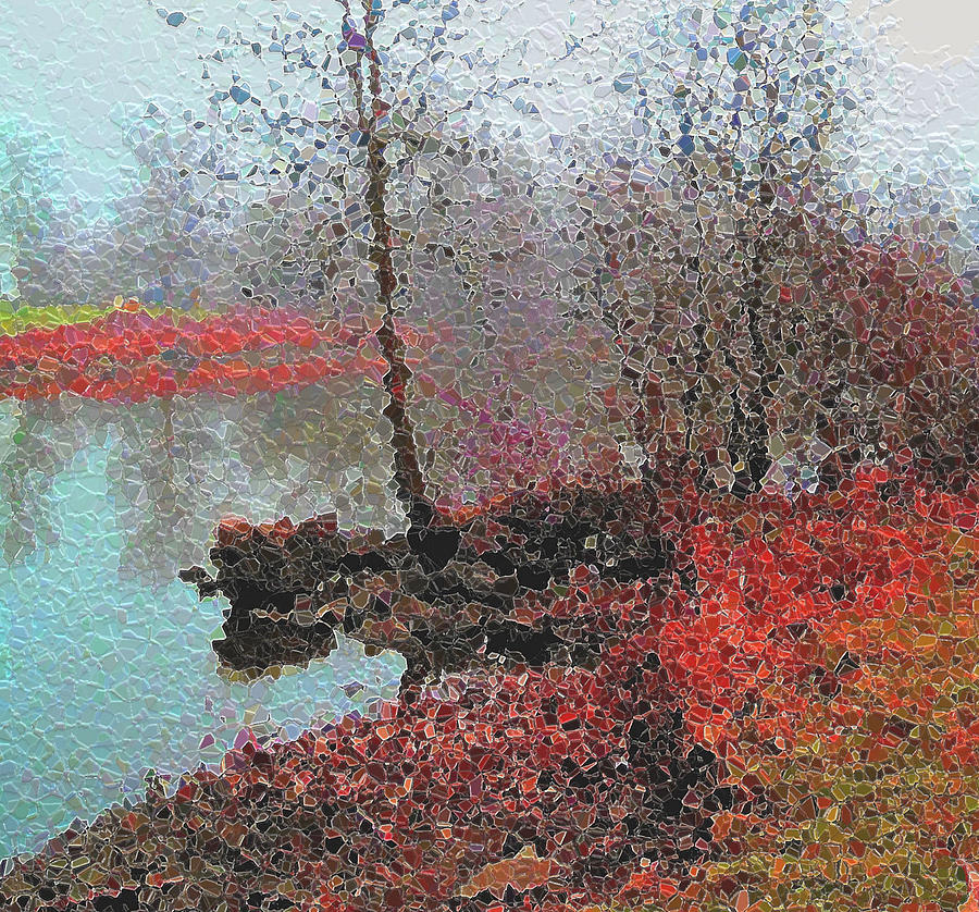 Photo Art And Paint Photograph - The View Across The Rideau On A Foggy Morning by Mario Carini
