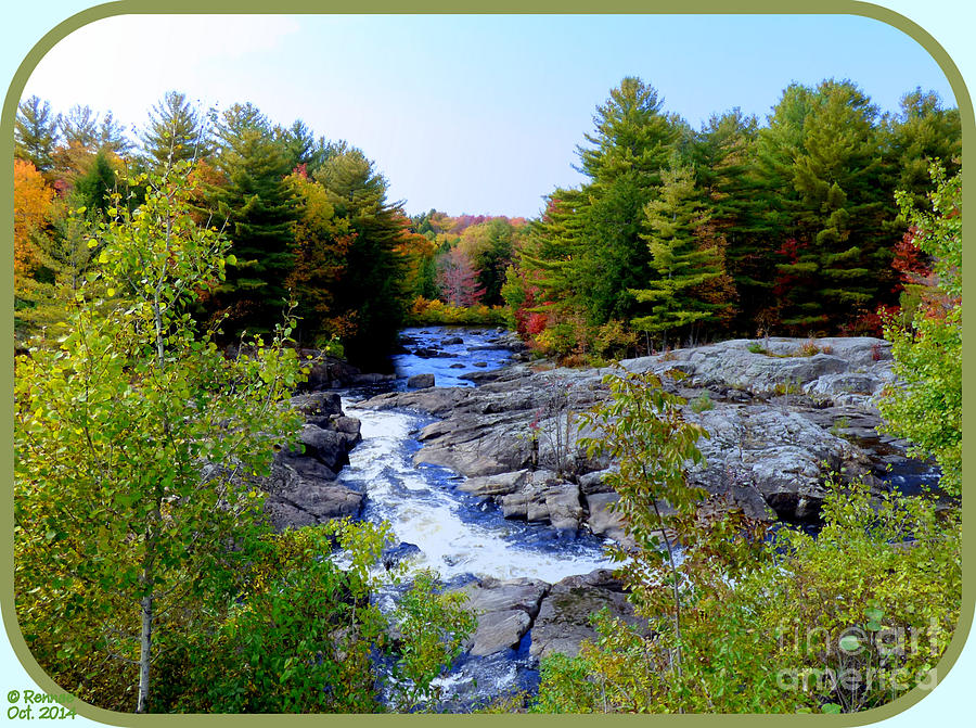 Nature Photograph - The View From The Bridge by Rennae Christman
