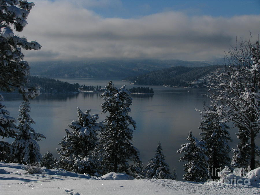 Water Photograph - The View by Greg Patzer