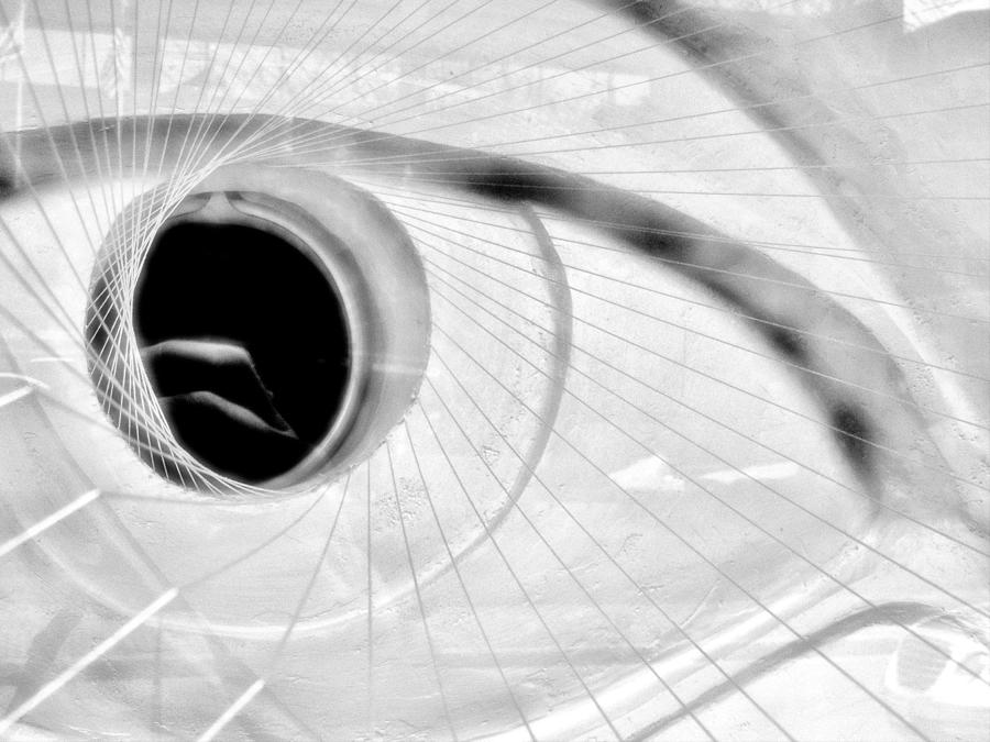 Abstract Photograph - The View In The Eye by Marcia Lee Jones