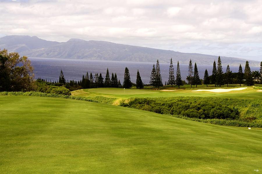 Golf Photograph - The View by Scott Pellegrin