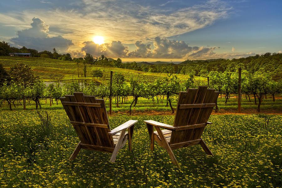 Appalachia Photograph - The Vineyard   by Debra and Dave Vanderlaan